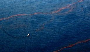 Wyciek ropy w Zat. Meksykańskiej większy niż oceniano
