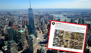Setki ptaków znaleziono na ulicach Nowego Jorku pod wieżami WTC