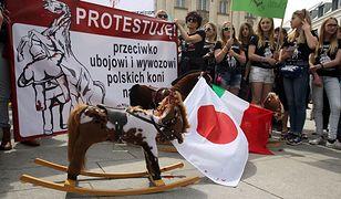 Protest przeciwko wywozowi polskich koni do japońskich rzeźni