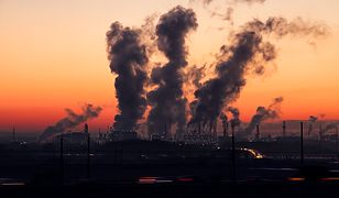 Smog – jak sprawdzić jakość powietrza bez wychodzenia z domu