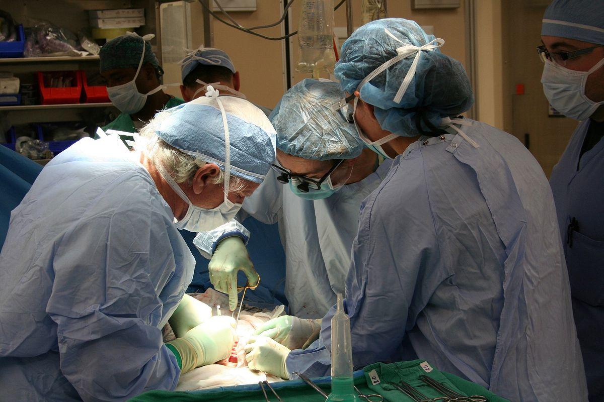 Ukraińscy lekarze uczyli się w Zabrzu, udało im się dokonać pierwszego przeszczepu płuc