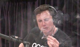 Elon Musk palił na wizji