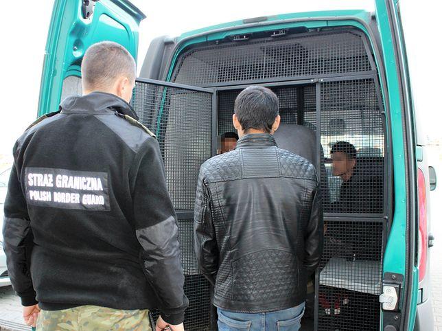Czterech Afgańczyków wjechało nielegalnie do Polski w naczepie ciężarówki