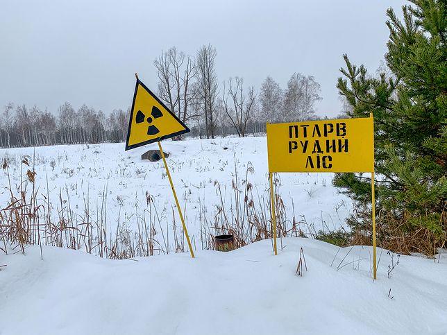 Na obszarach w pobliżu Czarnobyla nadal panują trudne warunki do życia.