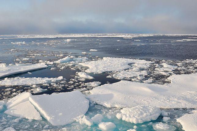 Ostrzeżenie NASA - topnieje lód w Arktyce. Może nawet zniknąć całkowicie