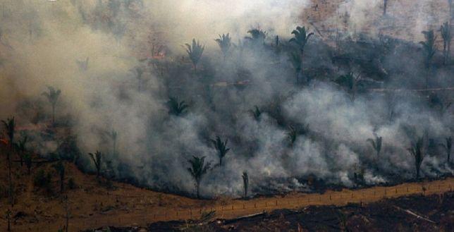 Amazonia. Pożary nie ustają, a Brazylia odrzuca pomoc G7