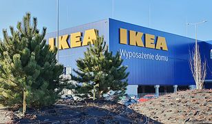 Ikea w Szczecinie prawie gotowa. Zostanie otwarta przed końcem półrocza