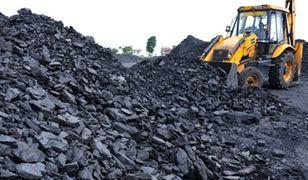 Gierek: nie ma odwrotu od węgla