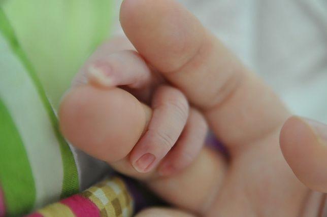 Chorzów. Porodówka nie zaprzestanie działalności.