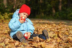 Jak rozwija się dwuletnie dziecko? Co powinno wzbudzić twój niepokój?
