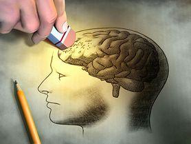 Deja vu, czyli mózg testuje pamięć