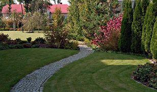 Triki, dzięki którym ogród wypięknieje w kilka chwil