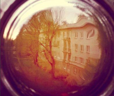Warszawski projekt: Stolica pod lupą