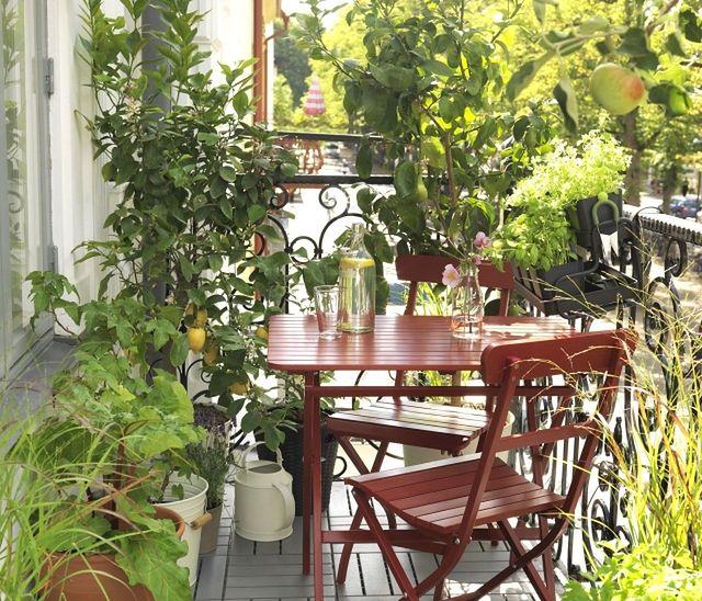 Mały balkon - własny ogródek w bloku