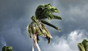 Irma zagraża też Florydzie