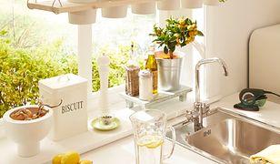 Świeże zioła w kuchni. Wiosenną dekorację łatwo zrobisz sam