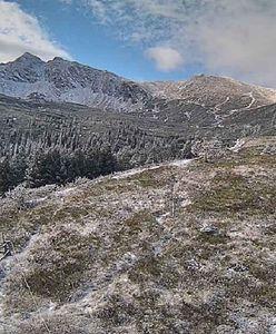 Śnieg w Tatrach. TOPR pokazało zdjęcia. Zwraca uwagę na jedną rzecz