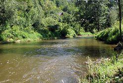 Tragedia w gminie Bałtów. Poślizgnęła się i wpadła do rzeki. Ratownicy znaleźli ciało