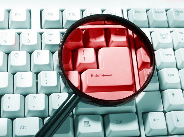 Czego szukamy w internecie?