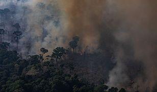 Pożary w Amazonii są wielką tragedią, ale nie możemy przeinaczać faktów