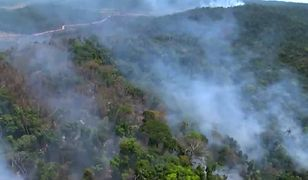 Pożar lasów w Amazonii