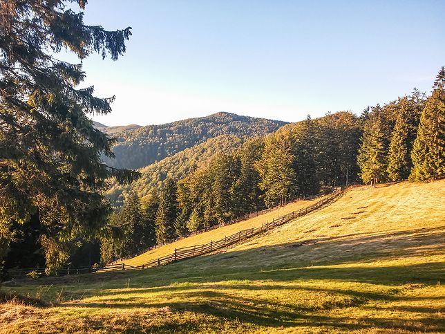 Praktyka podróżnika: pierwsze kroki w polskich górach