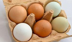 Na polskim rynku nie ma jaj zakażonych salmonellą