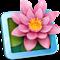 LilyView icon