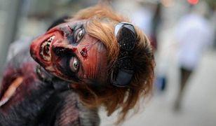 Zombie - najważniejsza jest profilaktyka