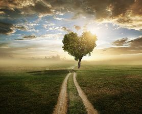 Jak dbać o serce? Oto 10 zasad