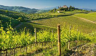 Położona w środkowych Włoszech Toskania jest jednym z najpiękniejszych regionów tego kraju