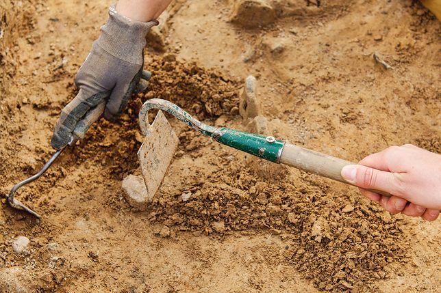 W 2016 roku trwały prace archeologiczne w poszukiwaniu wcześniejszej lokalizacji Chełmna.