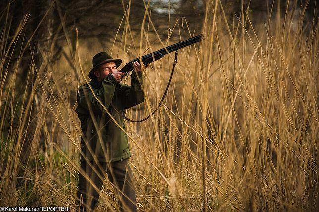 PZŁ chce zakazu publikowania zdjęć z polowań