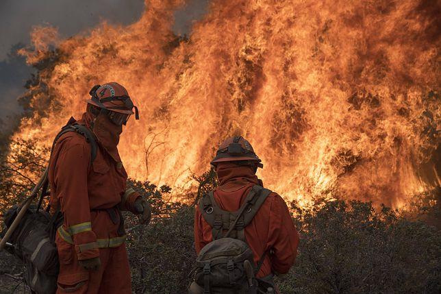W pożarze w Kalifornii najbardziej ucierpiało miasto Paradise