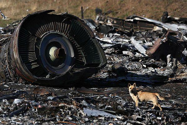Szczątki boeinga zestrzelonego nad Ukrainą