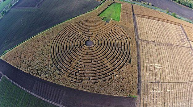 Labirynt w polu kukurydzy - niezwykła atrakcja tuż za Wrocławiem