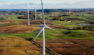Fatalne wyniki farm wiatrowych. Większość przynosi straty
