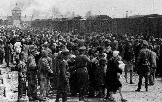 Transport węgierskich Żydów w obozie Auschwitz