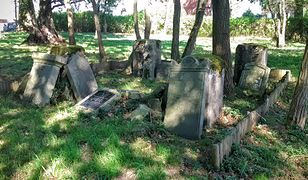 Przed zakupem polisy, warto zrobić zdjęcie grobu w nienaruszonym stanie