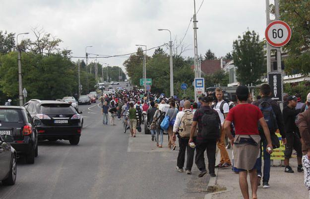 Na Śląsku odbędzie się wielki marsz przeciw imigrantom. Swój udział zapowiedziało już 27 tys. osób