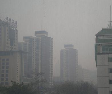 RPO: smog narusza dobra osobiste