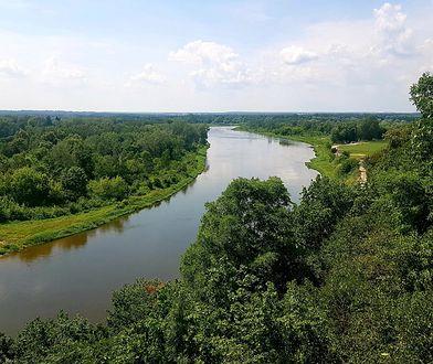 Najbardziej malowniczy odcinek Bugu to jego podlaski przełom - od Niemirowa przez Mielnik do Drohiczyna