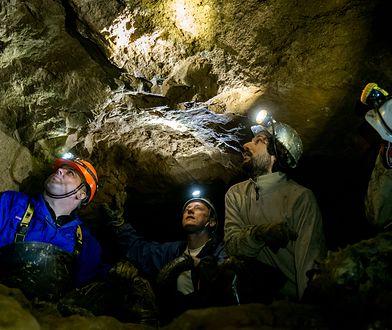 Tarnogórskie zabytki już zwiedza więcej turystów. Sukces dzięki UNESCO