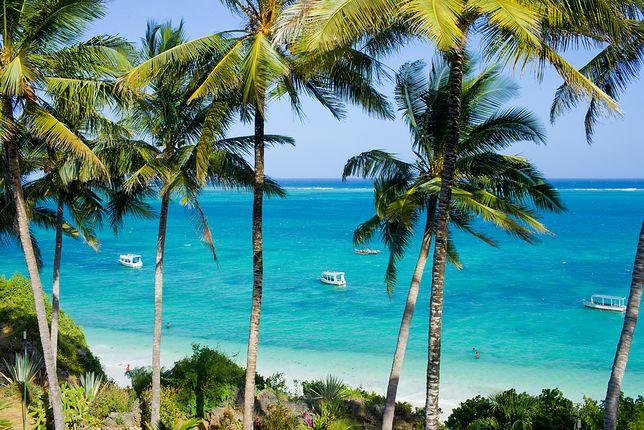 Egzotyczne kierunki w biurach podróży. Kenia i Sri Lanka