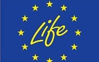 Wydłużenie terminów naboru wniosków o współfinansowanie projektów LIFE