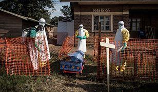 Pracownicy medyczni dezynfekują trumnę ofiary eboli