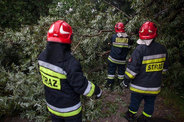 Nawałnice nad Polską. Powalone drzewa, zalane ulice