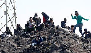 Imigranci w Calais