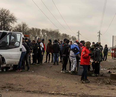 Organizacje charytatywne rozdają imigrantom w Calais darmowe posiłki