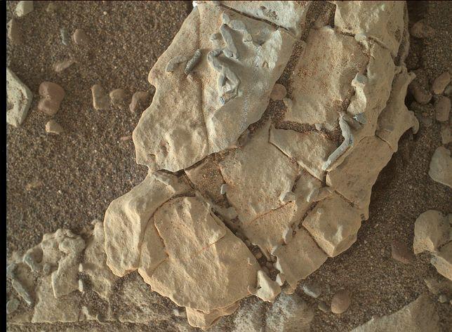 Odkrycie na Marsie. NASA się głowi, a internet ma ubaw